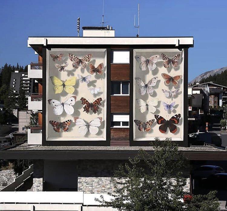 室外蝴蝶墙绘.jpg